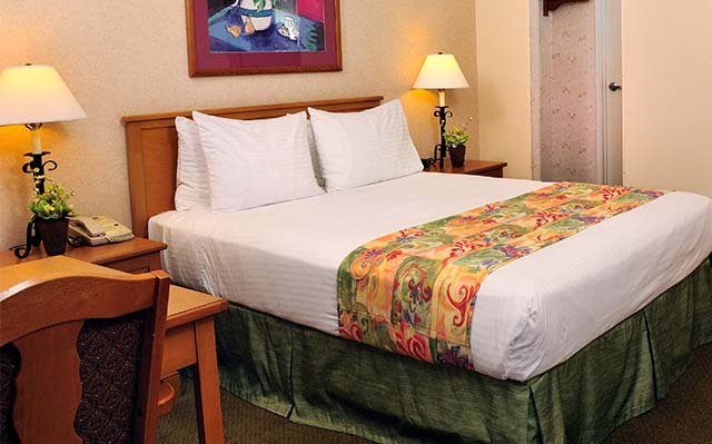 Single King Lamplighter Inn & Suites at SDSU, California